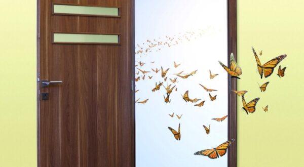 Borovi beltéri ajtók